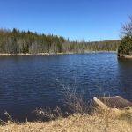 Mono ON Lakefront